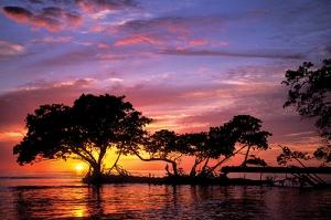 Everglades - Panther Key